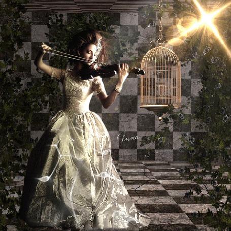 Анимация Девушка играет на скрипке, рядом висит золотая клетка, стены обвиты плющем (© Bezchyfstv), добавлено: 23.03.2015 00:11
