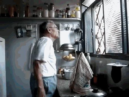 Анимация К старику на кухню прилетел его маленький друг - колибри