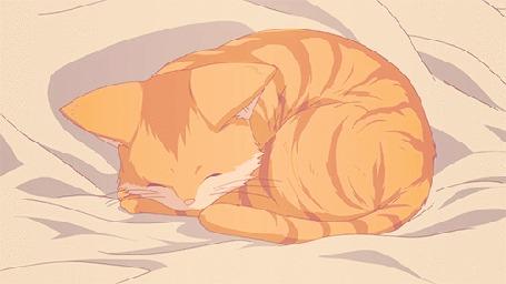 Анимация Полосатый кот спит