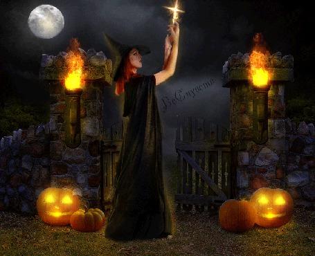 Анимация Девушка ведьма в полнолуние, в окружении тыковок и факелов, вознесла крест к небу (© Bezchyfstv), добавлено: 24.03.2015 01:06