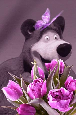 Анимация Главный герой из российского мультсериала Маша и Медведь наслаждается ароматом цветов, возле него пархает фиолетово-розовая бабочка (© zmeiy), добавлено: 24.03.2015 21:50