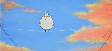 Анимация Dera Mochimazzi / Дэра Мотимаддзи из аниме Tamako Market / Магазинчик Тамако (© Maya Natsume), добавлено: 25.03.2015 23:01
