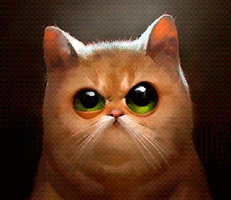 Анимация Зеленоглазый кот хмурится (© Seona), добавлено: 01.04.2015 15:52
