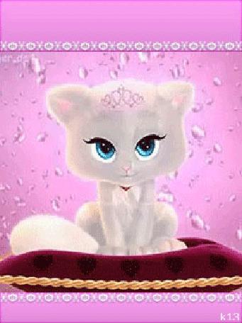 Анимация Голубоглазый белый котенок