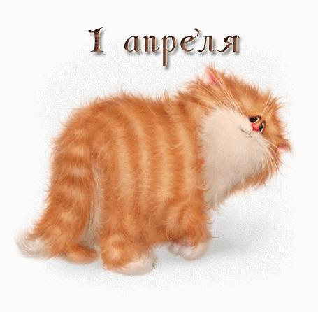 Анимация Упитанный полосатый котик моргает глазками (1 апреля Никому не верю!) (© 16061984), добавлено: 01.04.2015 16:14