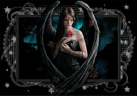 Анимация Девушка ангел с черными крыльями и с красной розой в руке