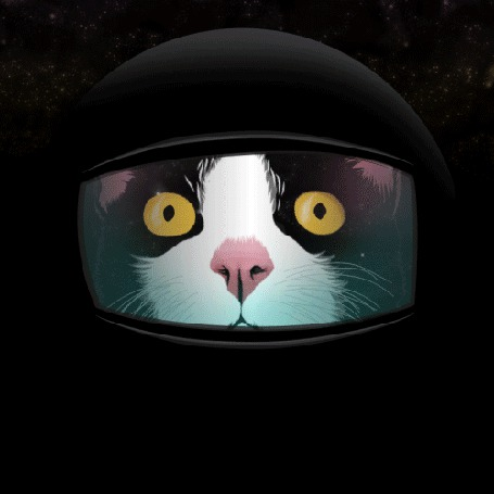 Анимация Кошка - космонавт в удивлении (© ВалерияВалердинова), добавлено: 02.04.2015 15:31