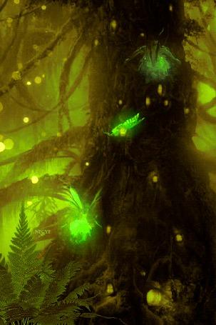 Анимация Феи кружат в волшебном лесу ночью