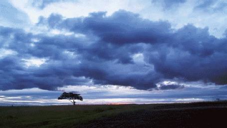 Анимация Меняющееся небо на закате (© Seona), добавлено: 04.04.2015 14:27