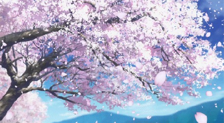 Анимация Слетающие лепестки с весеннего дерева (© zmeiy), добавлено: 09.04.2015 11:31