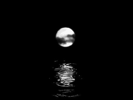 Анимация Луна освещает дорожку в каплях дождя (© zmeiy), добавлено: 09.04.2015 11:33
