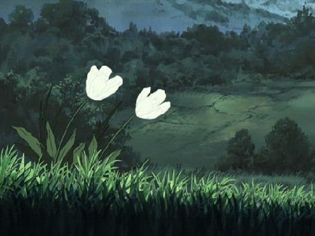 Анимация Два белых цветка колышутся от ветра (© zmeiy), добавлено: 10.04.2015 22:22
