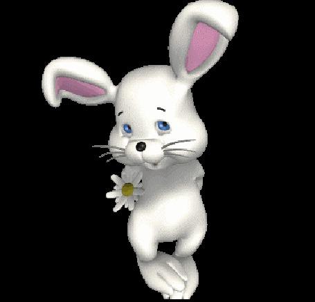 Анимация Зайчик прячет ромашку (© zmeiy), добавлено: 12.04.2015 11:52