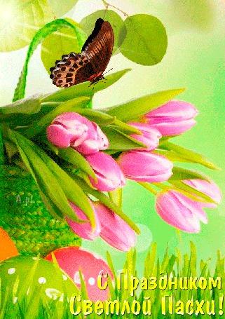 Анимация В плетенной корзиночке лежат розовые тюльпаны, на которых сидит бабочка, рядом с корзинкой лежат пасхальные яйца (С Праздником Светлой Пасхи!) (© Svetlana), добавлено: 12.04.2015 12:22