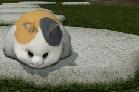 Анимация Толстая кошка катается на камне