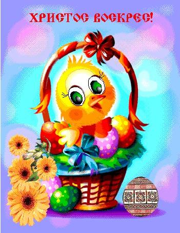 Анимация Цыпленок сидит в корзинке с крашенными яйцами и герберами (Христос Воскрес!)