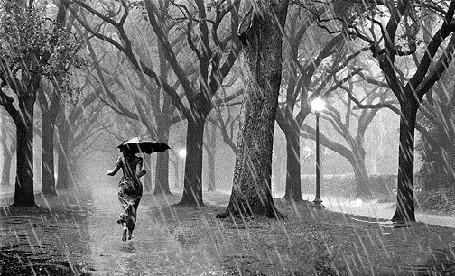 Анимация Девушка в дождливом парке (© zlaya), добавлено: 13.04.2015 20:30