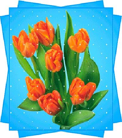 Анимация Оранжевые тюльпаны в синей рамке (© elenaiks), добавлено: 14.04.2015 12:13