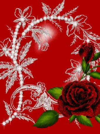 Анимация Красные розы на красном фоне (© elenaiks), добавлено: 14.04.2015 12:14