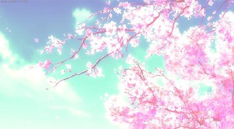 Анимация Лепестки сакуры летят на ветру (© Kuppuru), добавлено: 14.04.2015 15:07