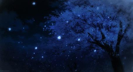 Анимация Слетающие весенние лепестки на фоне ночного неба