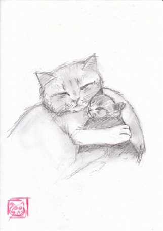 Анимация Кот обнимает котенка