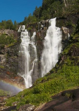 Анимация Вода лесного водопада течет по камням и уходит в реку (© Solnushko), добавлено: 15.04.2015 12:46