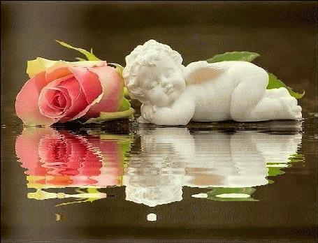 Анимация Скульптура ангела рядом с розой лежит у воды (© zmeiy), добавлено: 19.04.2015 23:30