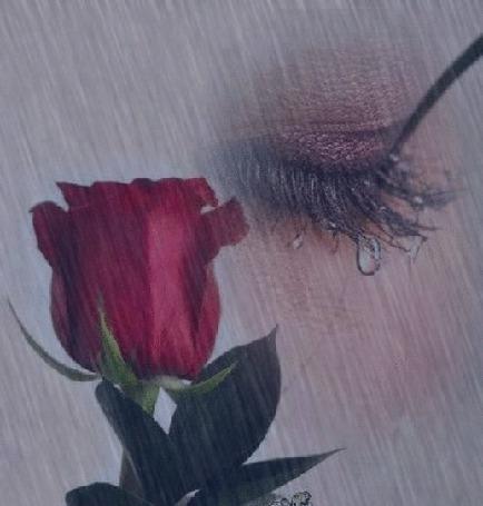 Анимация Девушка со слезой на ресницах и роза под дождем с молнией (© zmeiy), добавлено: 19.04.2015 23:37