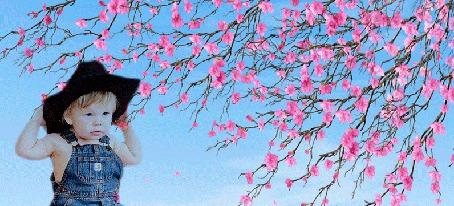 Анимация Мальчик в ковбойской шляпе, в джинсовом комбинезоне сидит под цветущим деревом сакуры