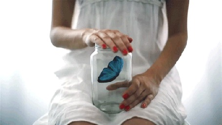 Анимация Девушка держит в руках банку, в которой сидит синяя бабочка (© Seona), добавлено: 21.04.2015 12:02