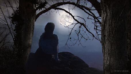Анимация Девушка сидит ночью на горе, смотря на полную луну в небе, by Marie Francesca