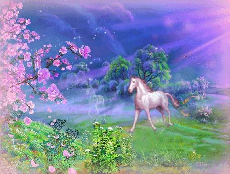 Анимация Розовые сны художник В Цыганов. По зеленому лугу бежит лошадь и ее тень, слева с цветущего дерева опадают розовые лепестки, справа светят солнечные лучи