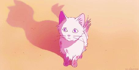 Анимация Белый кот мяукает, кадр из аниме Возвращение кота / Neko no Ongaeshi (© Kuppuru), добавлено: 23.04.2015 17:45