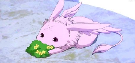 Анимация Зверек из аниме 07-Ghost / Седьмой Дух кушает травку (© Kuppuru), добавлено: 23.04.2015 22:18