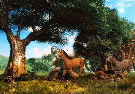 Анимация Две лошади бегут вдоль деревьев, by Mira (© irina.marianna1), добавлено: 26.04.2015 00:05