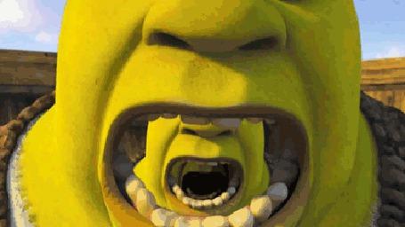 Анимация Шрек / Shrek в бесконечности (© Anatol), добавлено: 26.04.2015 23:05