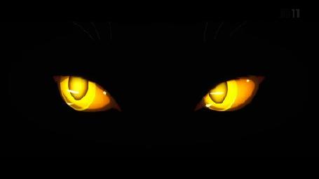 Анимация Желтые глаза на черном фоне (© Arinka jini), добавлено: 27.04.2015 00:40