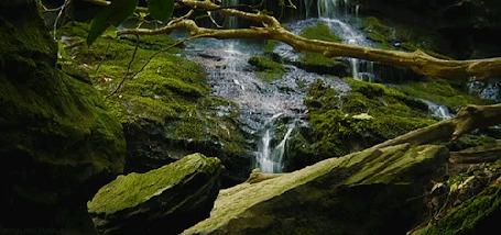 Анимация Водопады в лесу (© zmeiy), добавлено: 27.04.2015 22:02