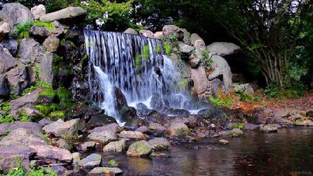 Анимация Водопад посреди леса (© Seona), добавлено: 28.04.2015 14:00
