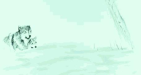 Анимация Рисованные бегущие волки (© zmeiy), добавлено: 30.04.2015 11:19
