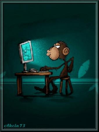 Анимация Обезьяна сидит за компьютером, чешет себе спину и модерирует работы, Akela73 (© Akela), добавлено: 02.05.2015 16:05
