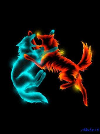 Анимация Меняющие цвета изображения двух играющих волчат, Akela 73 (© Akela), добавлено: 02.05.2015 22:36