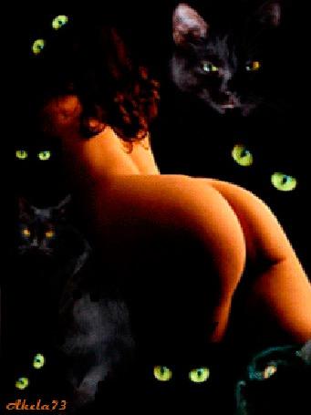 Анимация Обнаженная девушка в окружении черных котов с горящими от страсти глазами, Akela 73