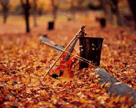 Анимация Смычок играет на скрипке, которая стоит на осенних листьях (© zmeiy), добавлено: 03.05.2015 07:19