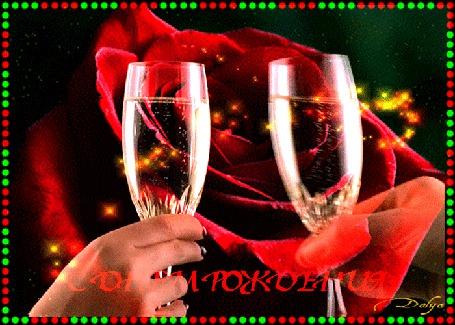 Анимация Праздник день рождения, на фоне распускающейся красной розы фейерверк, у девушки и мужчины в руках бокалы с шампанским. (с днем рождения)