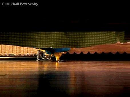 Анимация Попугай приносит хозяину тапочки, Mikhail Petrovsky