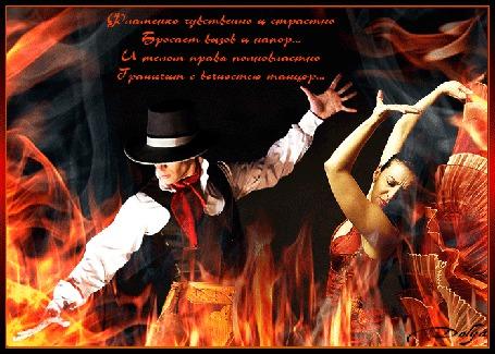 Анимация Мужчина и девушка танцуют фламенко в пламени (Фламенко чувственно и страстноБросает вызов и напор. И телом правя полновластноГраничит с вечностью танцор.)