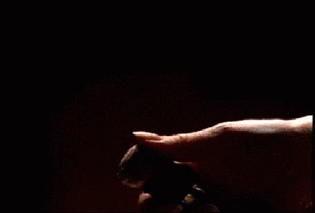Анимация Женские руки открывают бутылку шампанского (© Akela), добавлено: 08.05.2015 15:00