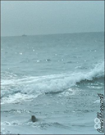 Анимация Дельфин выпрыгивает из воды (© 16061984), добавлено: 10.05.2015 00:54